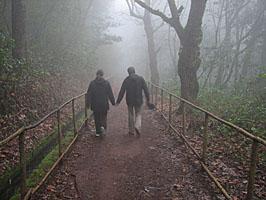 Rancho Madeirense - Queimadas