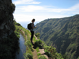 Im Tal der Rib. Ponta do Sol